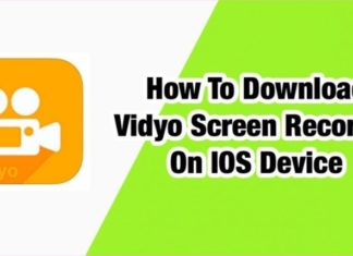 Vidyo Screen Recorder